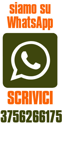 whatsapp escashop